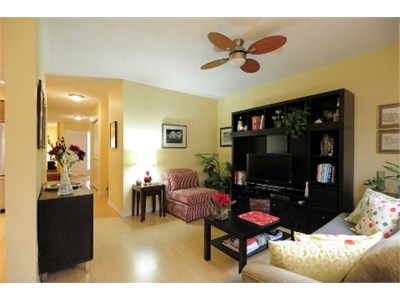 Cozy Home 4BD in City center - close to square one.